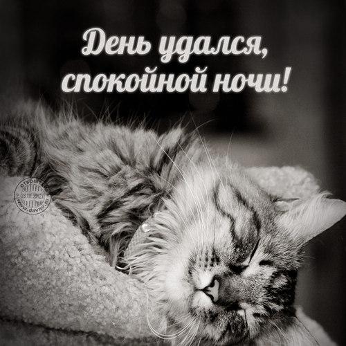 Красивая открытка, гиф (gif) спокойной ночи любимой женщине