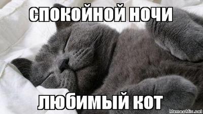 Милая картинка, гифка романтической ночи любимому парню