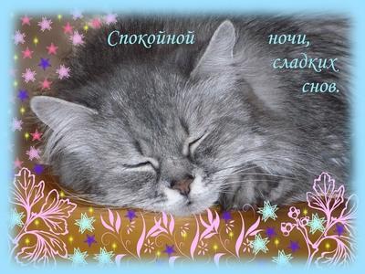 Страстная открытка, гиф (gif) красивой ночи любимому мужчине